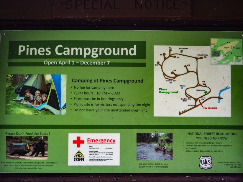 Mini review – Free Campsite Jefferson National Forest – The PinesCampground